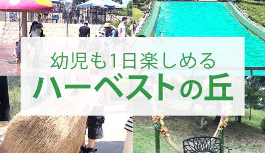 2歳の幼児と楽しめる大阪府堺市のハーベストの丘 緑のミュージアムおススメ遊び場 関西の幼児と遊べるスポット