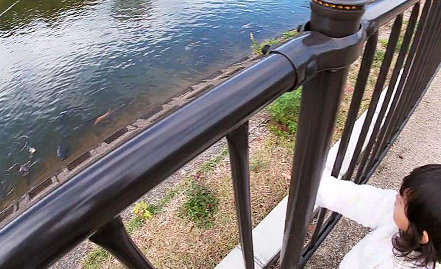 スターバックス奈良鴻池運動公園前店、鴻池を散歩