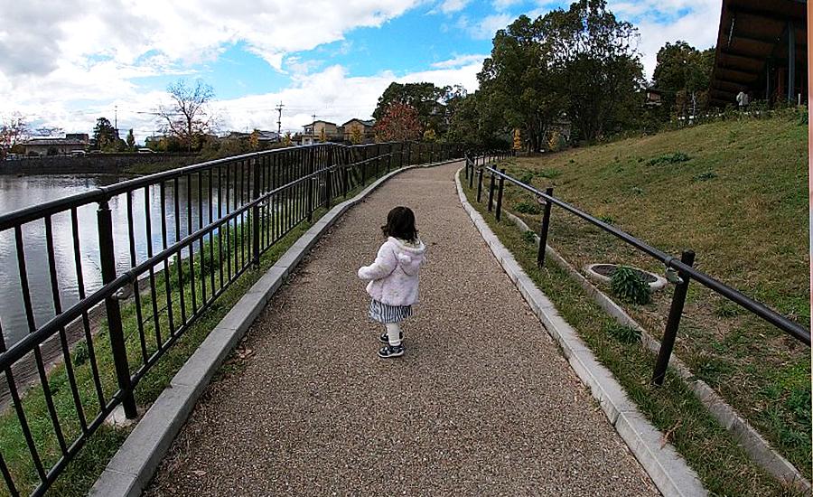 スターバックス奈良鴻池運動公園前店、鴻池を散歩2