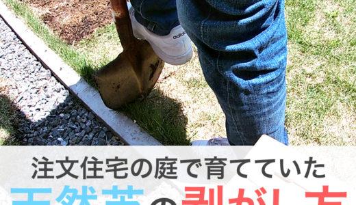 注文住宅の庭の天然芝の剥がし方、天然芝の処分の仕方。天然芝のデメリット。